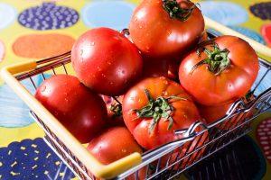 外観_ヘッダー_スライダー_背景画像_Header- tomato